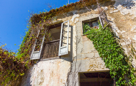 large country house abandoned in ruins with vegetation