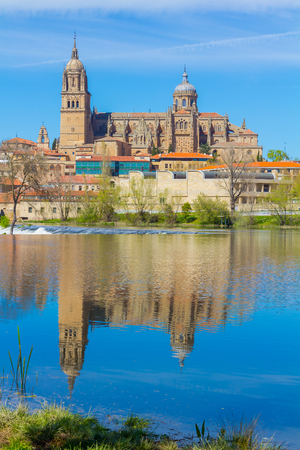 salamanca: View of the cathedral of Salamanca reflected in the river, spain