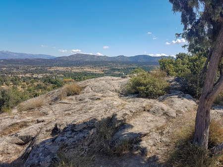 lowland landscape with bushes and trees rocks Banco de Imagens