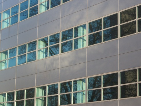 Office Building with Reflected Tree