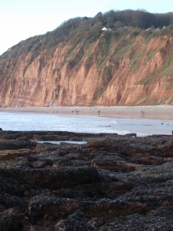 Mussel Beds and Red Cliffs