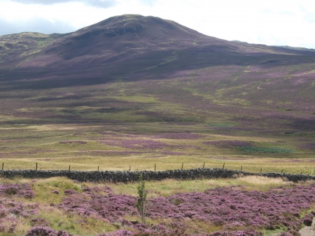 Bleaberry Fell photo