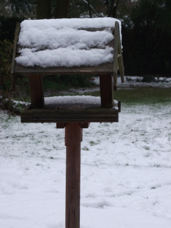 Bird Table in Snow photo