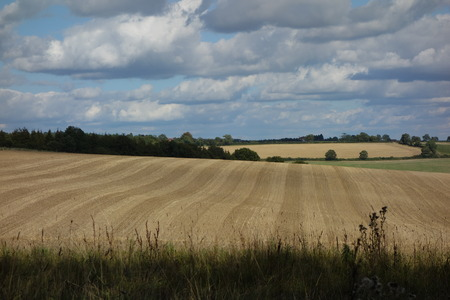 oxfordshire: Harvested Field