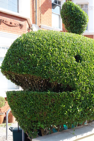 topiary: Topiary Whale