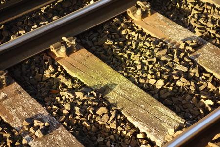 wood railways: Sunlit Railway Track