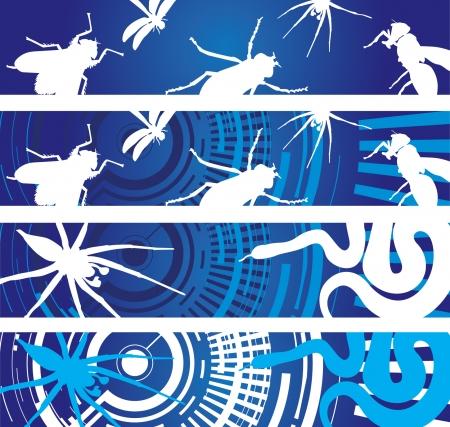 crawly: bug banner  Illustration
