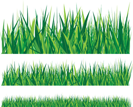 blades: grass