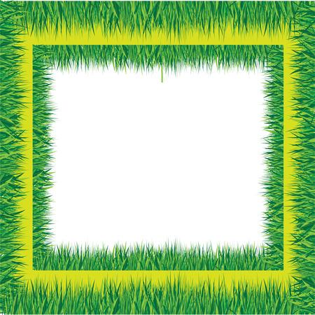 blades of grass: grass border