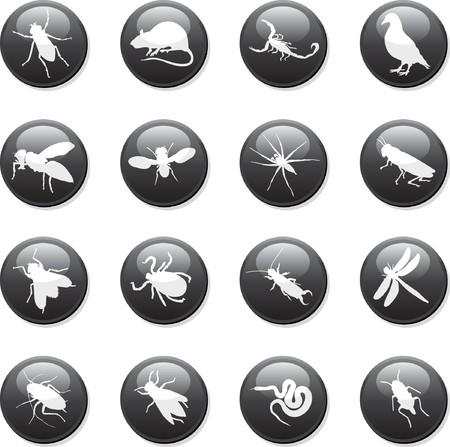 roedor: botones de roedores y plagas  Vectores