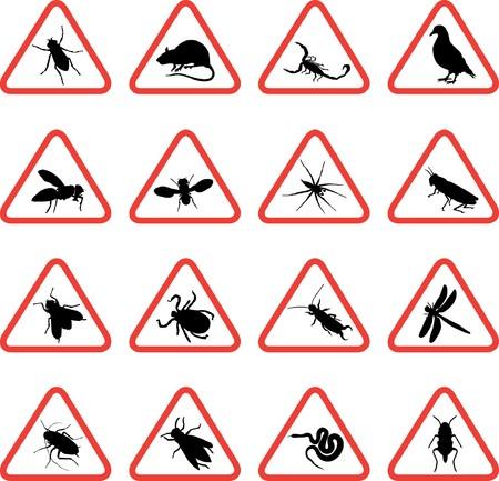 scorpion: les rongeurs et les parasites