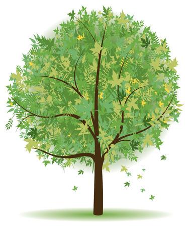 foglie di quercia: albero astratto