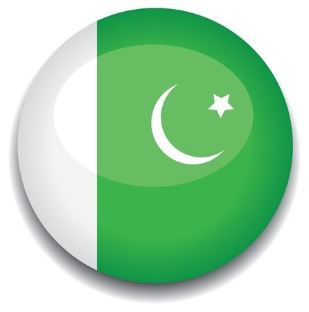 파키스탄: 버튼 파키스탄 플래그 일러스트