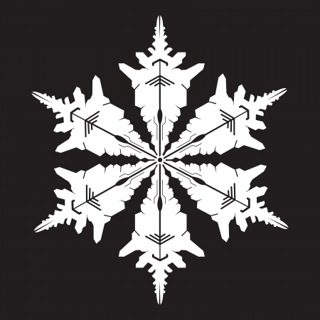 snowflake silhouette Stock Vector - 10940247