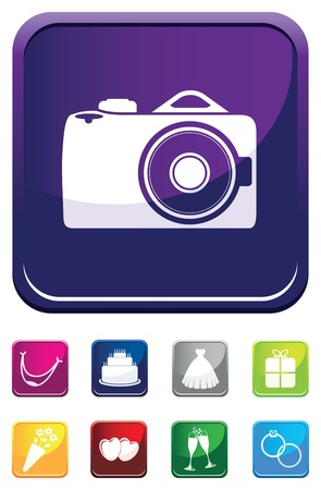 photography wedding symbol Vector