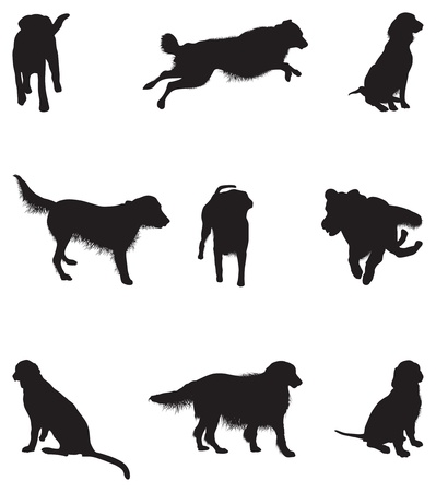 set of dog silhouettes Stock Vector - 14950504