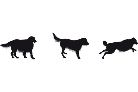 leaping: set of dog silhouettes Illustration