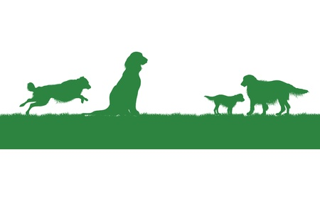 grass silhouette: four dogs on a grass background Illustration