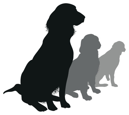 large group of animals: dogs in a line Illustration