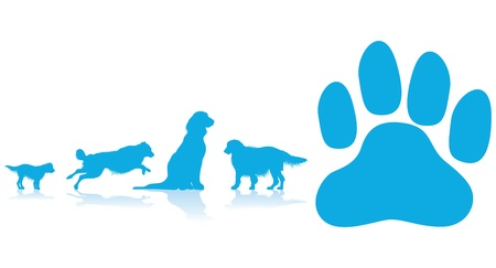 dog paw: dog paw background Illustration