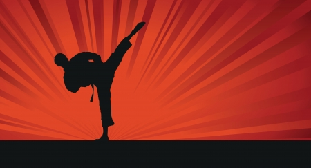 karate silhouette background Vector