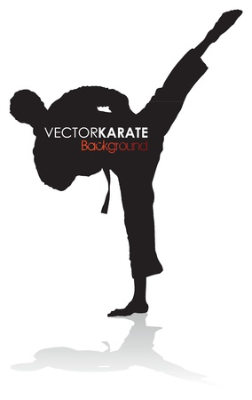 karate fighter: karate silhouette