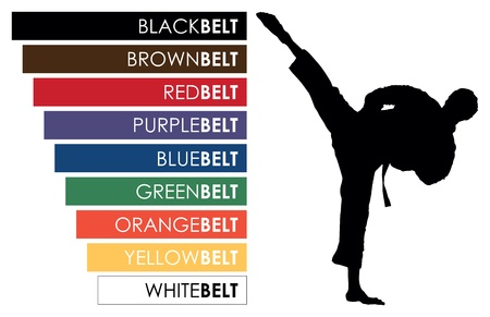 martial art: karate belts