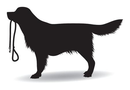 perro labrador: silueta de perro
