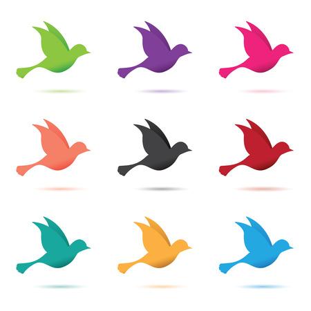 birds in flight: set of birds in flight