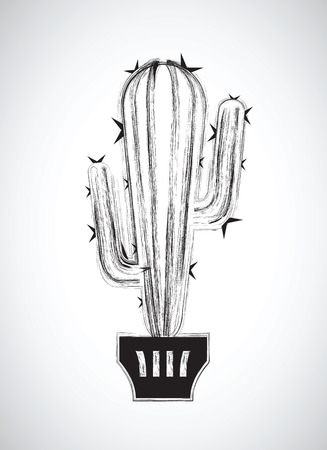 white backgrounds: a black and white cactus