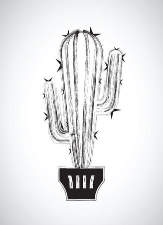 blanco: un cactus blanco y negro
