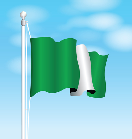 nigeria: nigeria flag