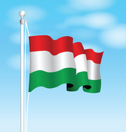 hungary: hungary flag Illustration