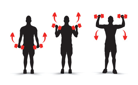 bicep curls: lifting weights infographics Illustration