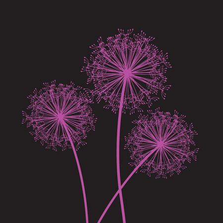 dandelion pink set Illustration