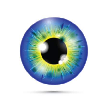 blue and yellow realistic eyeball Banque d'images - 114880312