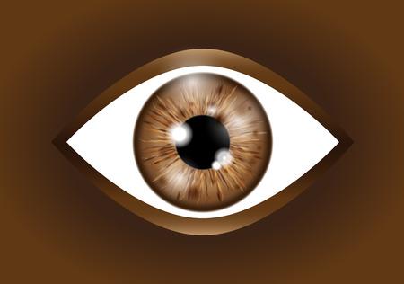 brown Realistic eyeball Ilustração Vetorial