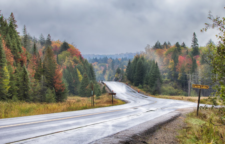 Fall on Highway 60 in Algonquin Park