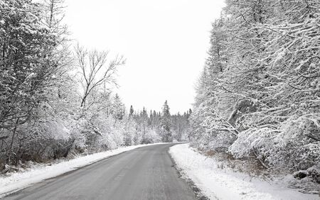 A winter road in the country with trees covered in snow in Canada
