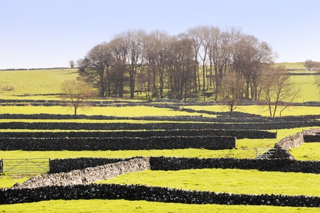 peak district landscape with fields and dry stone walls photo