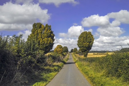 a tarmac country lane or road in a rural environment in the countryside Stock Photo - 17332642