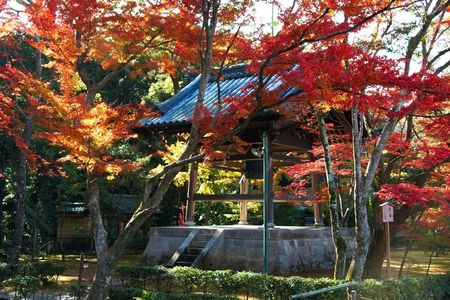 autmn: A very old looking buddhist bell in Japan surrounded by autumn leaves. Stock Photo