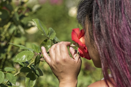 An asian woman smelling a fragrant rose Stock Photo