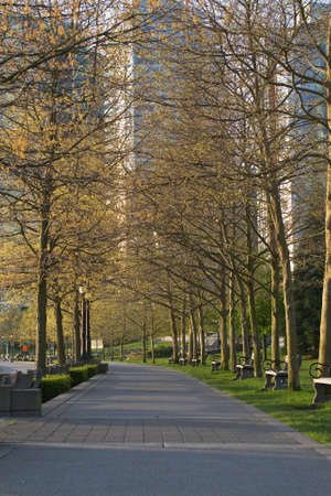 lampost: Early morning sunshine casts long shadows through the trees in Harbour Green Park, Vancouver BC. Stock Photo
