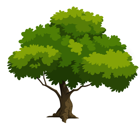 tree for cartoon 2D