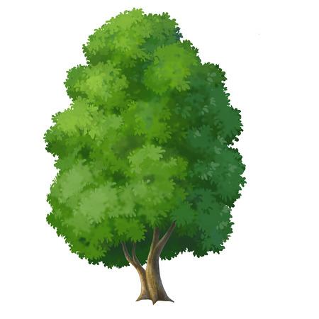 cartoon trees: illustration of a tree Stock Photo