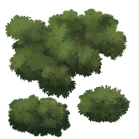 arboles caricatura: árbol de dibujos animados aislado en el fondo blanco