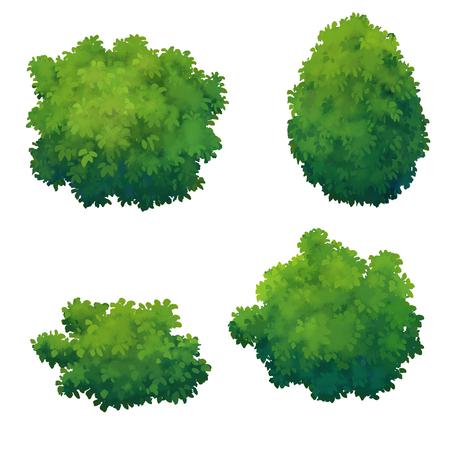 buisson: arbre pour dessin animé isolé sur fond blanc