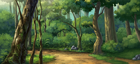jungle plenteous  in the morring time