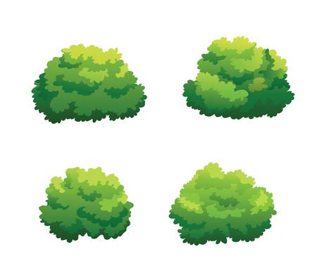 Illustration de brousse pour décorer magnifiquement le jardin.